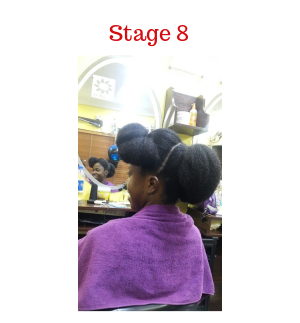 stage 8